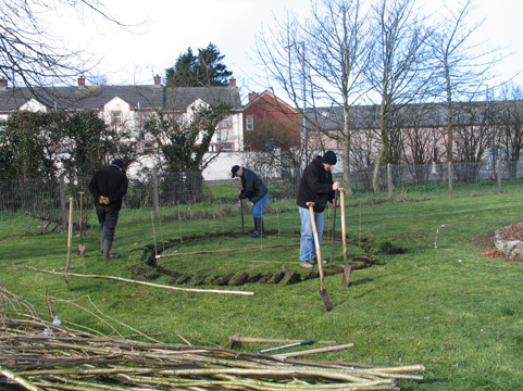 Conservation Volunteers building a Mesolithic hut at St Malachy's Primary, Coleraine